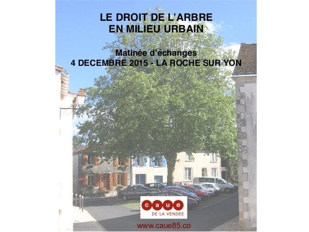 LE DROIT DE L'ARBRE EN MILIEU URBAIN Matinée d'échanges 4 DECEMBRE 2015 - LA ROCHE SUR YON www.caue85.co m