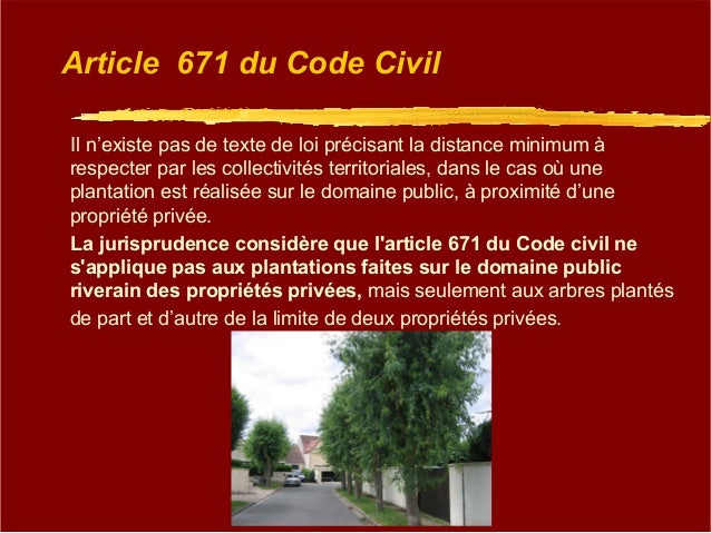 Matin e de l 39 arbre du 04 12 2015 la projection - Cloture entre voisin code civil ...