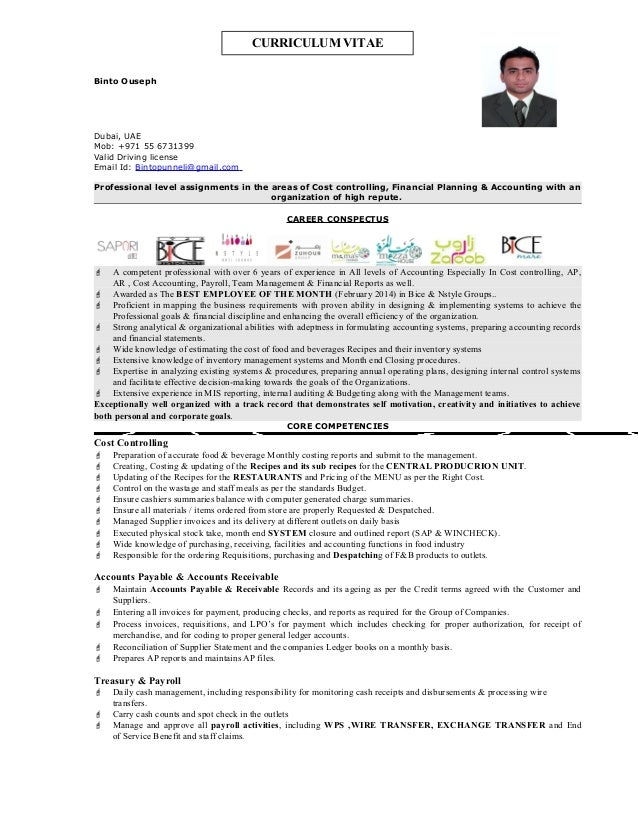 professional resume cost