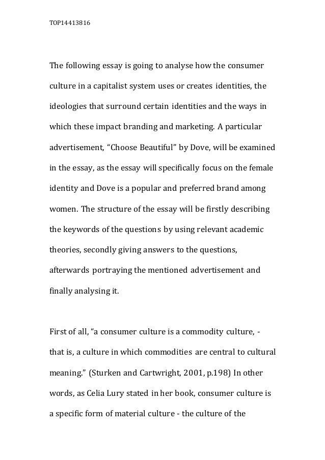 consumer culture essay top14413816 the following essay is going to analyse how the consumer culture in a capitalist system