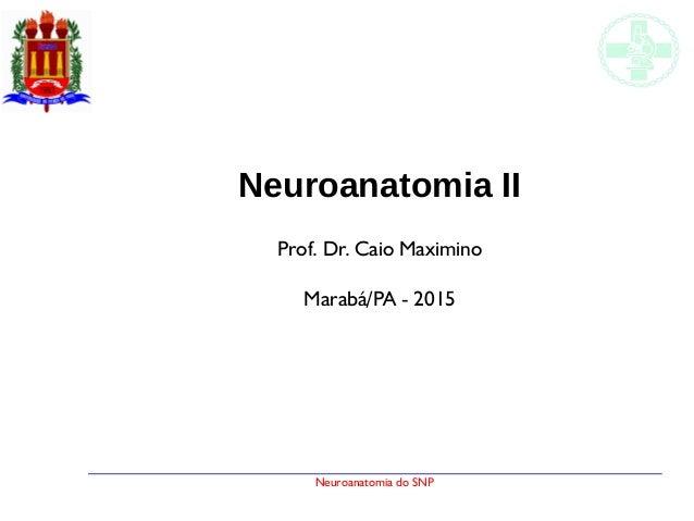 Neuroanatomia do SNP Neuroanatomia II Prof. Dr. Caio Maximino Marabá/PA - 2015