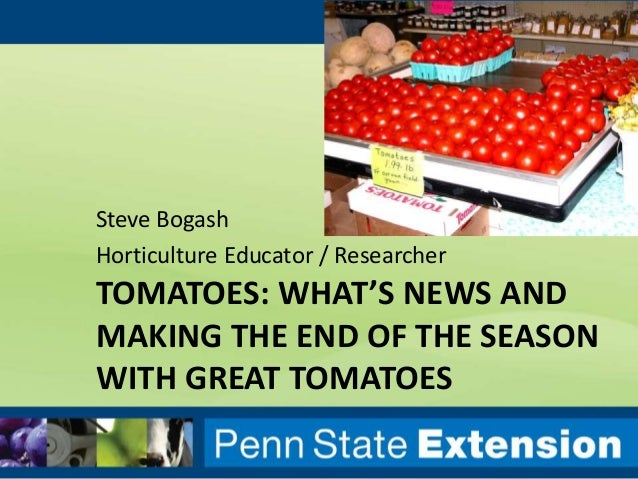 TOMATOES: WHAT'S NEWS AND MAKING THE END OF THE SEASON WITH GREAT TOMATOES Steve Bogash Horticulture Educator / Researcher