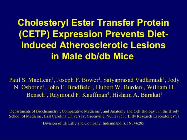 Cholesteryl Ester Transfer Protein (CETP) Expression Prevents Diet- Induced Atherosclerotic Lesions in Male db/db Mice Pau...