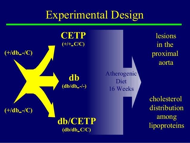Experimental Design CETP (+/+C/C) db/CETP (db/dbC/C) db (db/db-/-) Atherogenic Diet 16 Weeks lesions in the proximal ao...