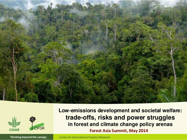 Low-emissions development and societal welfare: trade-offs, risks and power struggles in forest and climate change policy ...