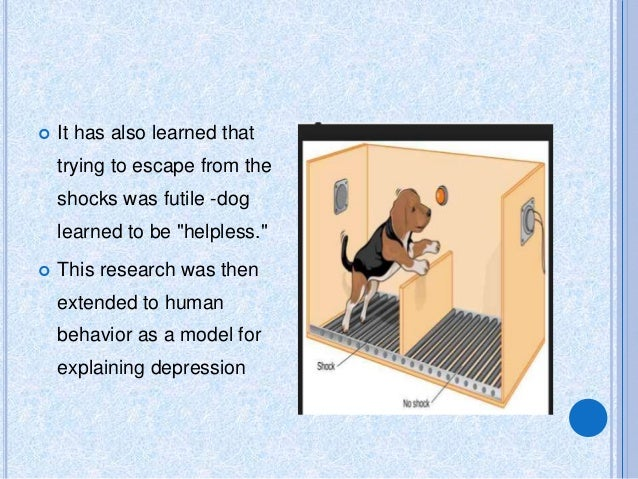 relationship between learned helplessness and human depression