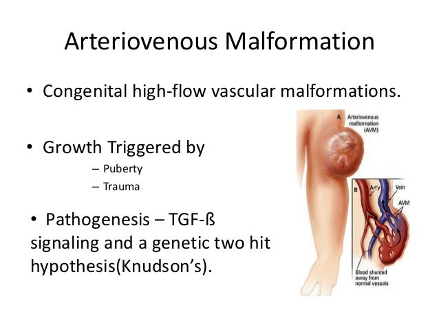 congenital malformations Congenital heart defects are malformations that are present at birth they may or may not have a disruptive effect on a person's circulatory system.
