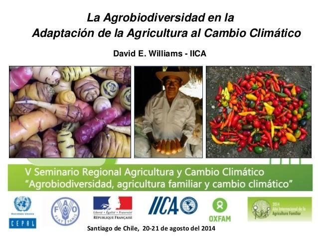 La Agrobiodiversidad en la Adaptación de la Agricultura al Cambio Climático  David E. Williams - IICA  Santiago de Chile, ...