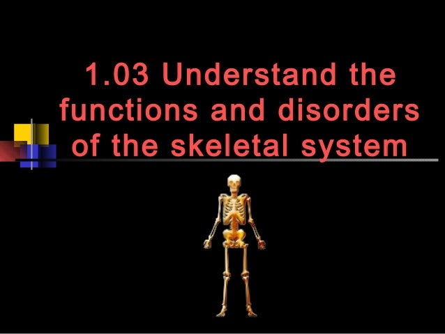 1.03 Understand thefunctions and disorders of the skeletal system