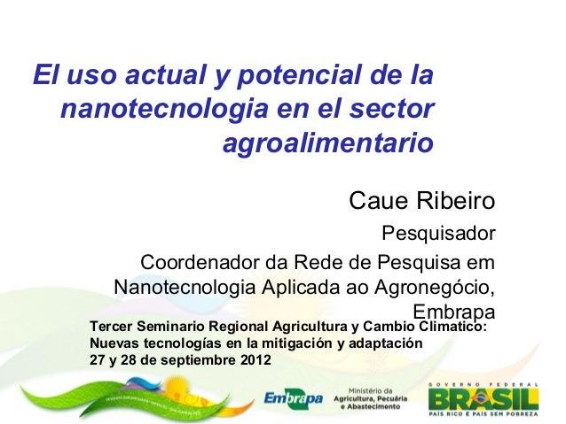 El uso actual y potencial de la nanotecnologia en el sector agroalimentario Caue Ribeiro Pesquisador Coordenador da Rede d...