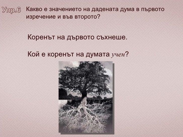 Какво е значението на дадената дума в първото изречение и във второто? Коренът на дървото съхнеше. Кой е коренът на думата...