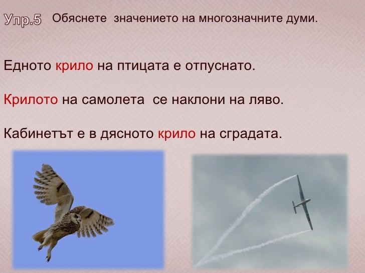 Обяснете  значението на многозначните думи. Едното  крило  на птицата е отпуснато. Крилото  на самолета  се наклони на ляв...