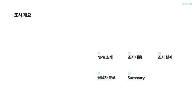 Nasreport_2021 NPR_인터넷 이용자 조사_2104 Slide 3