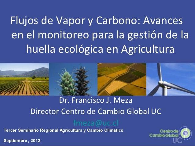 Flujos de Vapor y Carbono: Avances   en el monitoreo para la gestión de la      huella ecológica en Agricultura           ...