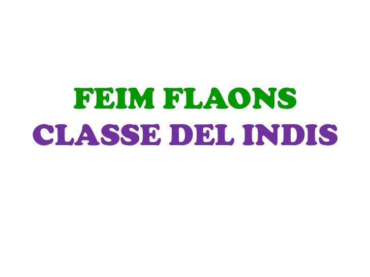 FEIM FLAONSCLASSE DEL INDIS