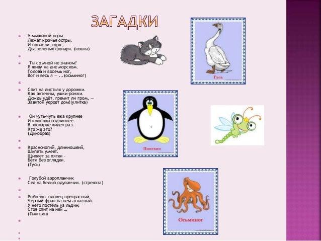 проект таркашевой софьи,1 «а»класс Slide 2