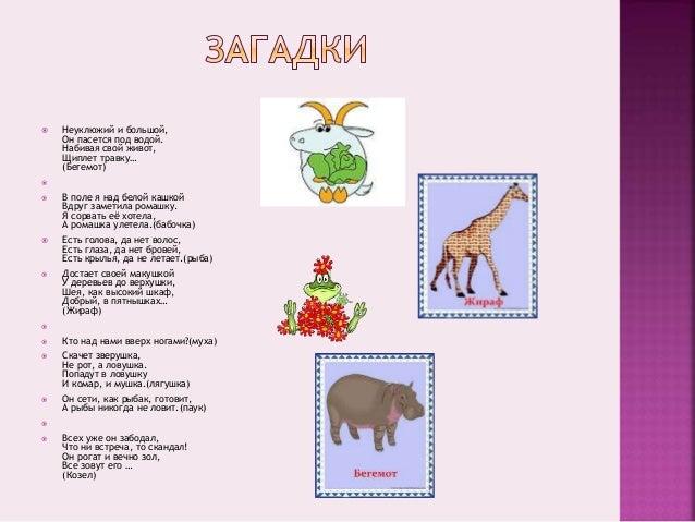 проект таркашевой софьи,1 «а»класс Slide 3