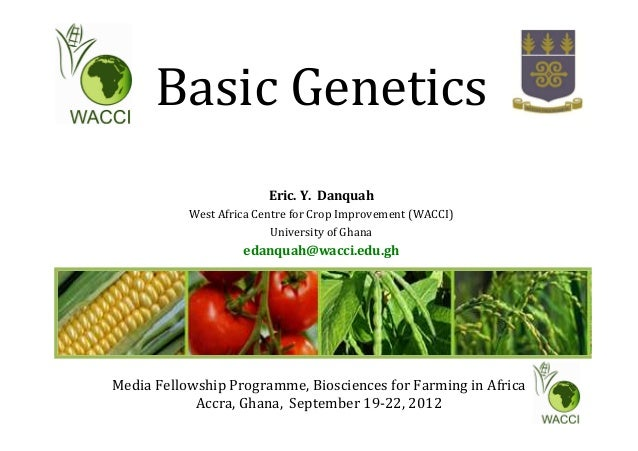 Basic Genetics Eric. Y. Danquah West Africa Centre for Crop Improvement (WACCI) University of Ghana edanquah@wacci.edu.gh ...