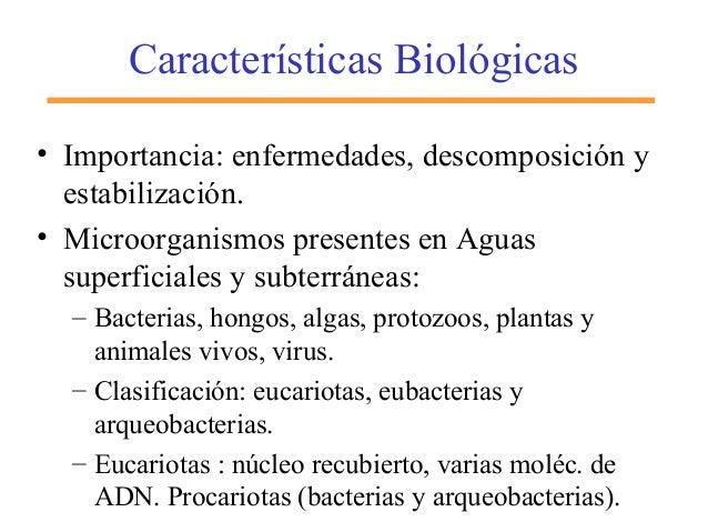 Características Biológicas • Importancia: enfermedades, descomposición y estabilización. • Microorganismos presentes en Ag...