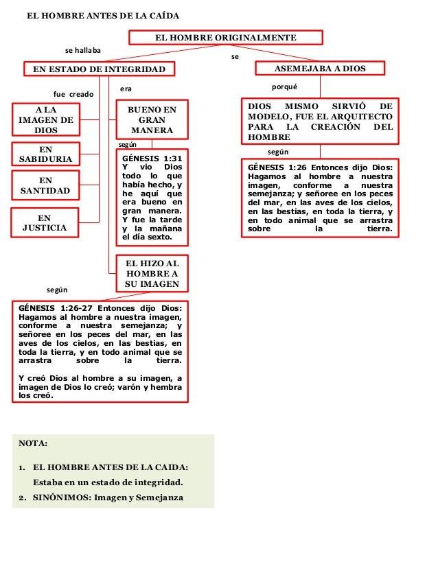 EL HOMBRE ANTES DE LA CAÍDA EL HOMBRE ORIGINALMENTE se hallaba EN ESTADO DE INTEGRIDAD fue creado A LA IMAGEN DE DIOS EN S...