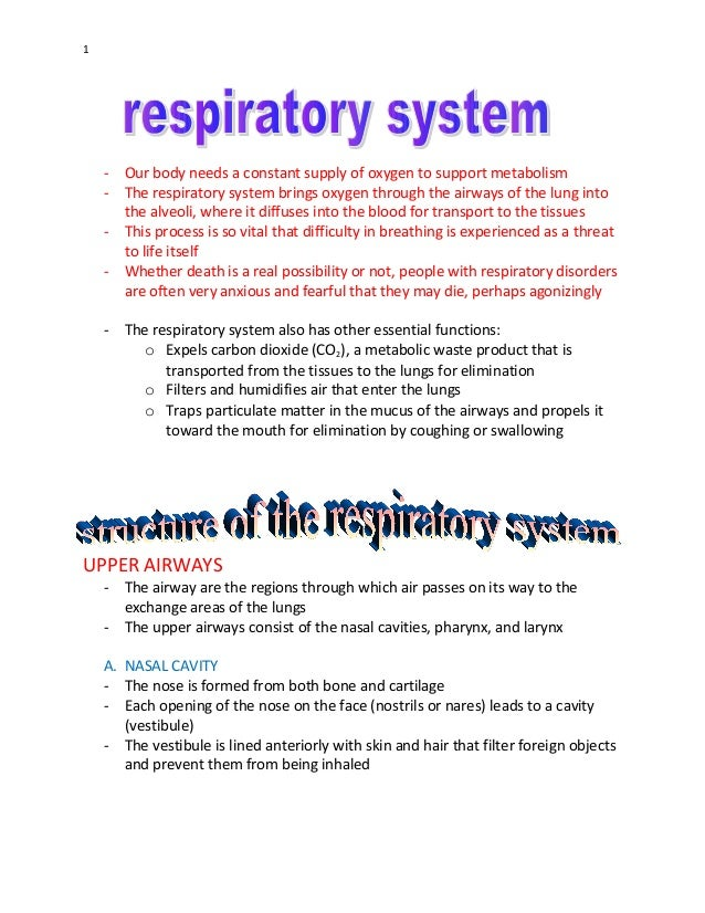 1 - Our body needs a constant supply of oxygen to support metabolism - The respiratory system brings oxygen through the ai...