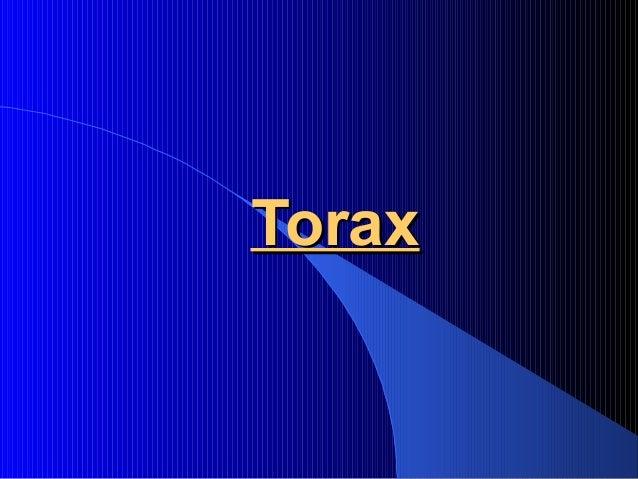 ToraxTorax