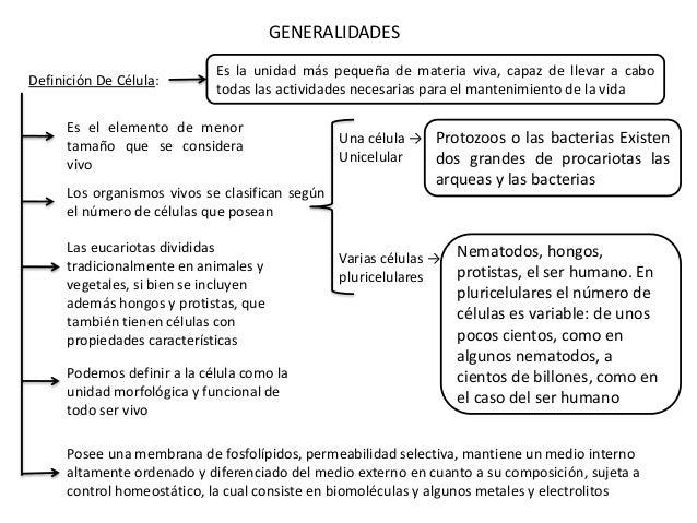 Definición De Célula: GENERALIDADES Es el elemento de menor tamaño que se considera vivo Los organismos vivos se clasifica...
