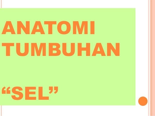 "ANATOMI TUMBUHAN ""SEL''"