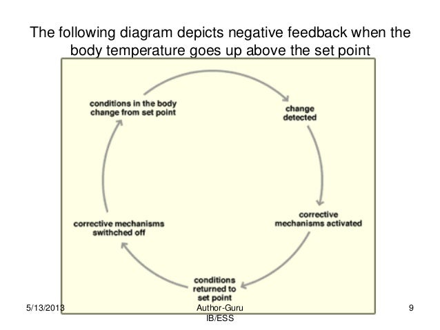 116 9 the following diagram depicts negative feedback when the body temperature ccuart Images