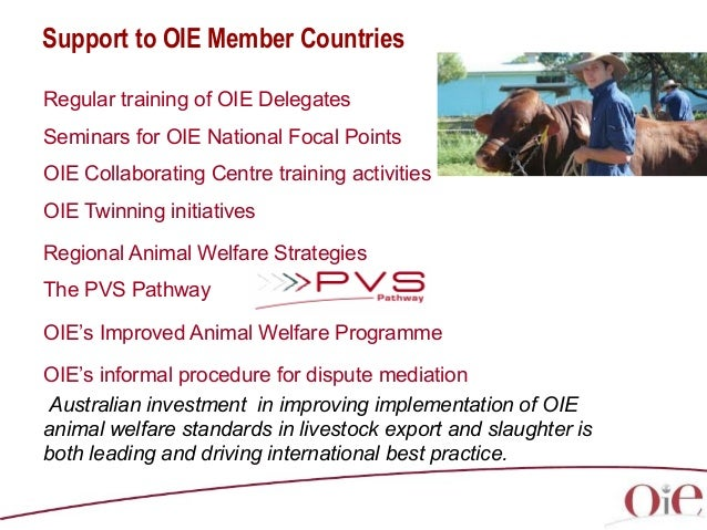 australian animal welfare standards and guidelines land transport of livestock