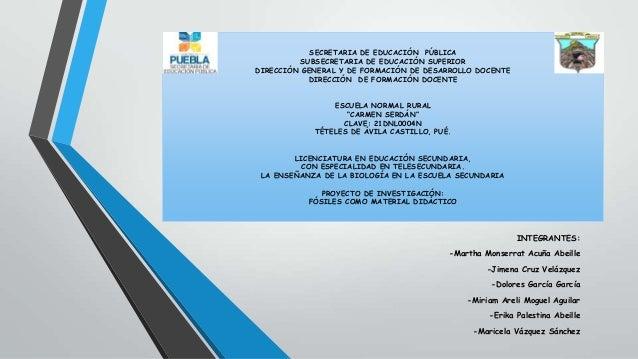 SECRETARIA DE EDUCACIÓN PÚBLICA SUBSECRETARIA DE EDUCACIÓN SUPERIOR DIRECCIÓN GENERAL Y DE FORMACIÓN DE DESARROLLO DOCENTE...
