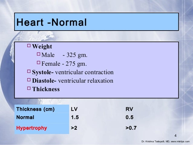 Heart -Normal  Weight Male - 325 gm. Female - 275 gm.  Systole- ventricular contraction  Diastole- ventricular relaxa...