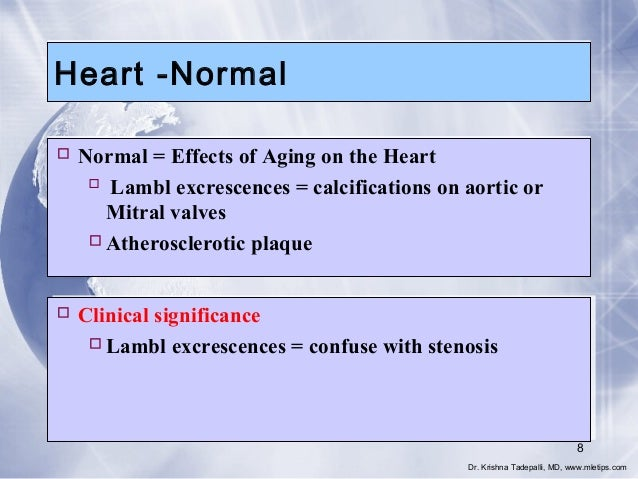 Heart -Normal  Normal = Effects of Aging on the Heart  Lambl excrescences = calcifications on aortic or Mitral valves  ...