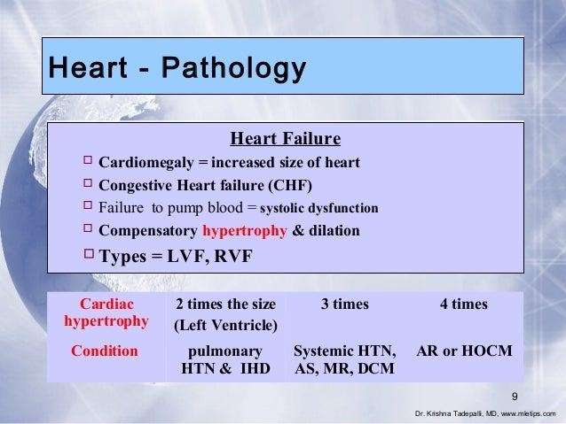 Heart - Pathology Heart Failure  Cardiomegaly = increased size of heart  Congestive Heart failure (CHF)  Failure to pum...