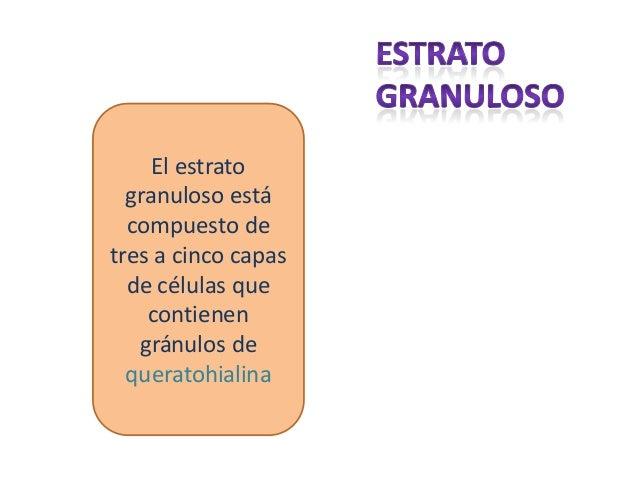 número de teléfono córneo piel oscura en Sevilla