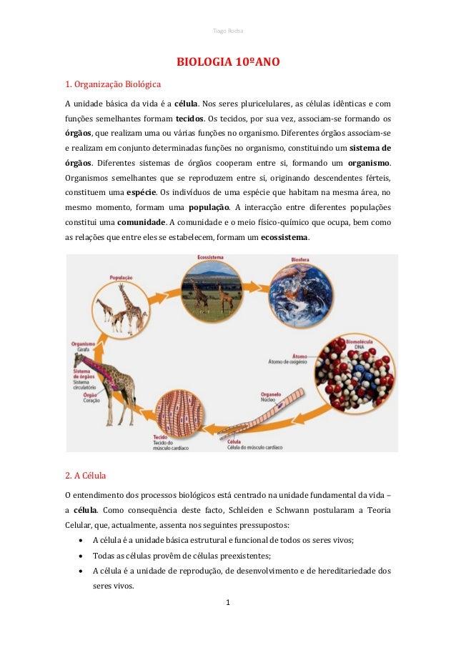 Tiago Rocha  BIOLOGIA 10ºANO 1. Organização Biológica A unidade básica da vida é a célula. Nos seres pluricelulares, as cé...
