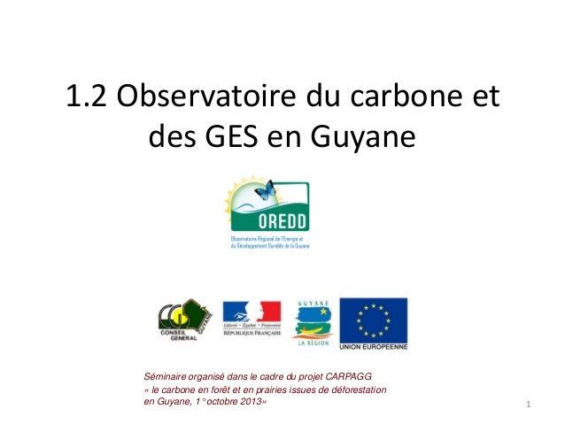 1.2 Observatoire du carbone et des GES en Guyane  Séminaire organisé dans le cadre du projet CARPAGG « le carbone en forêt...