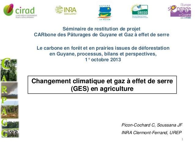 Séminaire de restitution de projet CARbone des Pâturages de Guyane et Gaz à effet de serre  C A R P A G G  Le carbone en f...