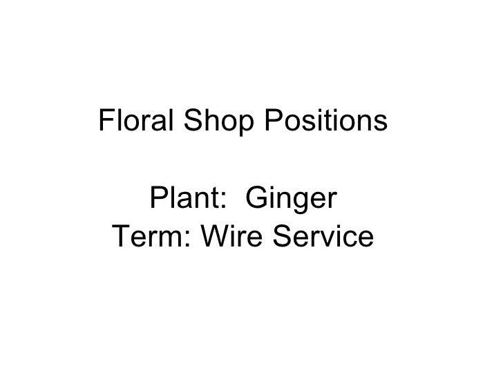 Floral Shop Positions Plant:  Ginger Term: Wire Service