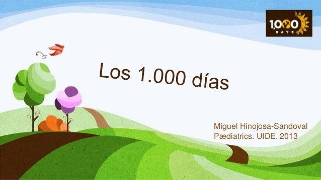 Miguel Hinojosa-Sandoval Pædiatrics. UIDE. 2013