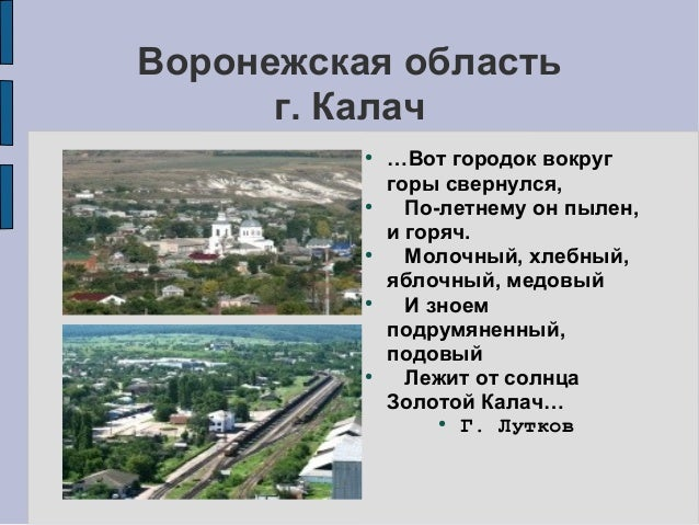 Калачеевский элеватор область воронежская область транспортер т5 термостат