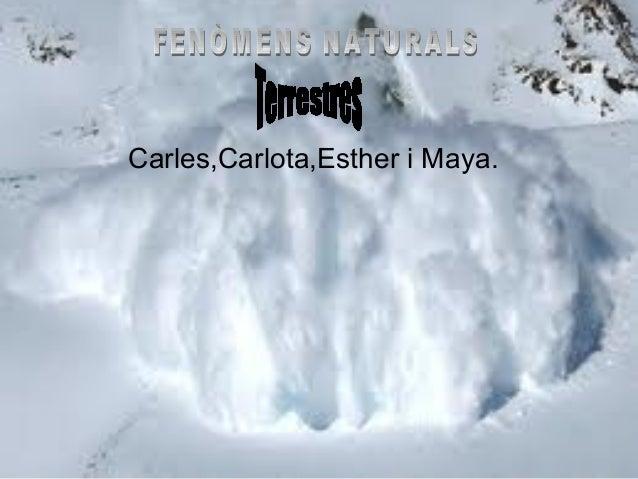 Carles,Carlota,Esther i Maya.