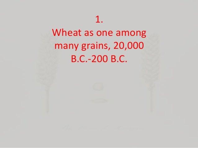 Wheat: The Grain at the Center of Civilization Slide 2