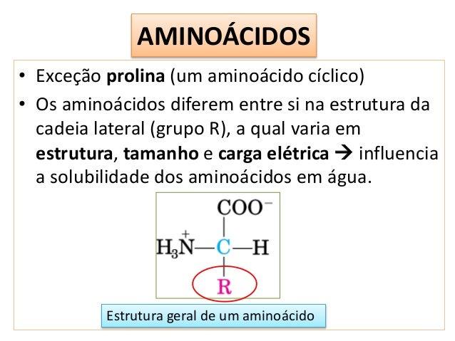 Aminoácidos Peptídeos E Proteínas