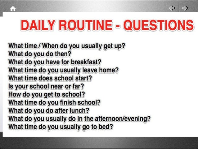 what is the daily routine