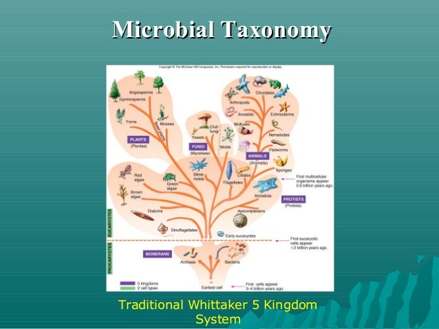 Microbial TaxonomyMicrobial Taxonomy Woese-Fox 3 Domain System