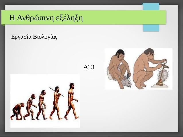 Η Ανθρώπινη εξέληξη Εργασία Βιολογίας Α' 3