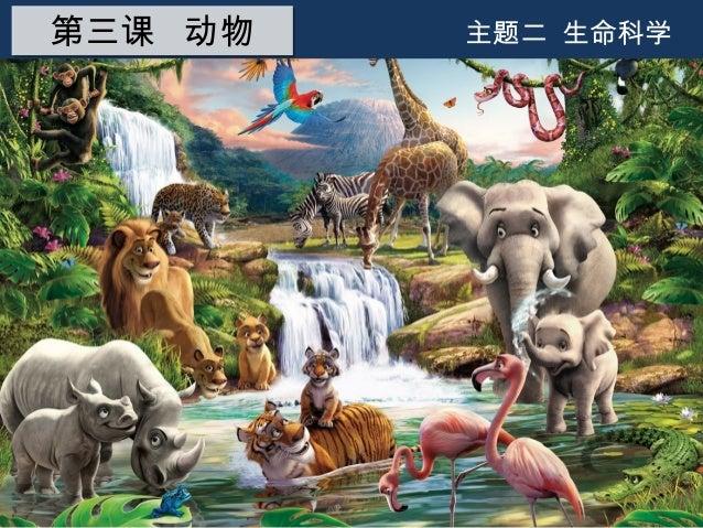 主题二 生命科学第三课 动物第三课 动物