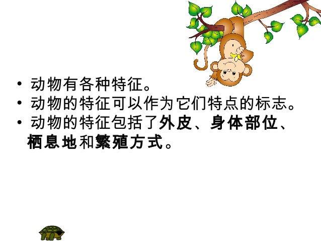 第三课动物(1) Slide 2