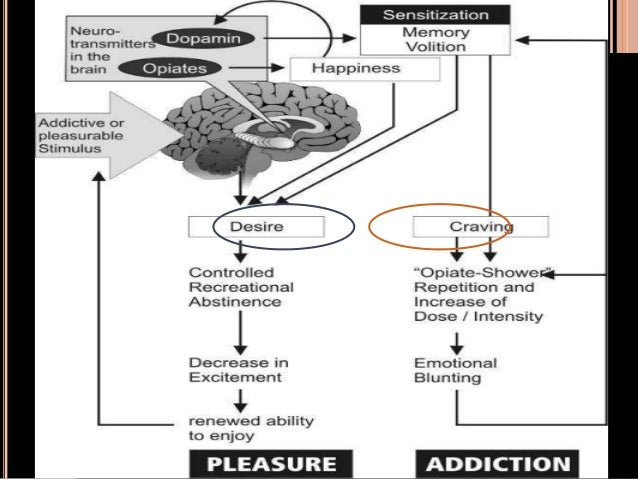 cyber addiction Internet addiction results in personal, family, academic, financial, and occupational problems that are characteristic of other addictions impairments of real life relationships are disrupted as a result of excessive use of the internet.